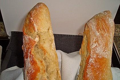 Baguette Parisienne 56