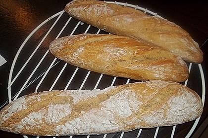 Baguette Parisienne 58