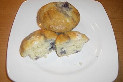 Blueberry - Sauerrahm - Muffins 43