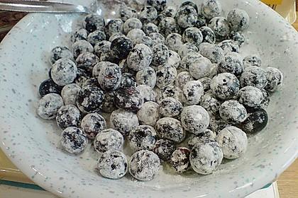 Blueberry - Sauerrahm - Muffins 31