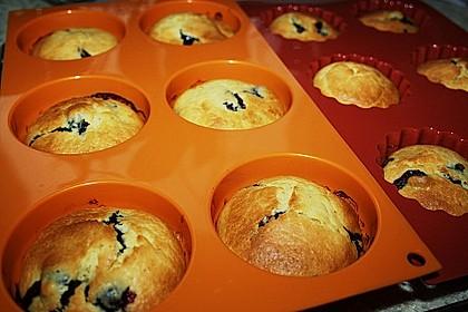 Blueberry - Sauerrahm - Muffins 20