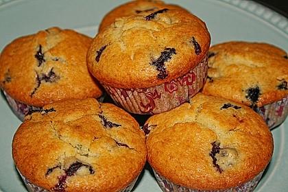 Blueberry - Sauerrahm - Muffins 9