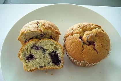 Blueberry - Sauerrahm - Muffins 26
