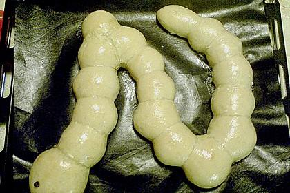 Tatzelwurm 87