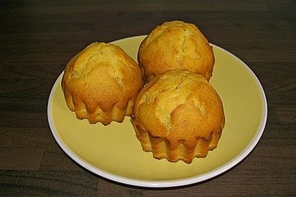 Honig - Muffins  mit  Maismehl 13