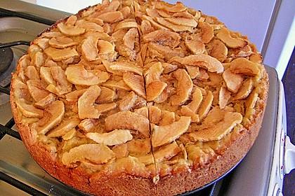 Schweizer Apfelkuchen 35