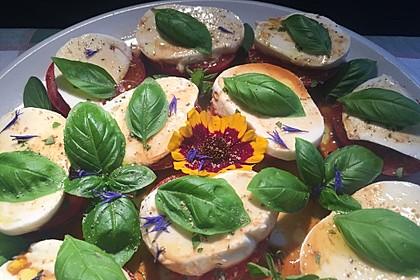 Tomate - Mozzarella - Salat mit Balsamicodressing