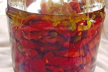 Getrocknete Tomaten pikant eingelegt 2