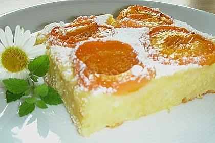Topfen - Früchtekuchen
