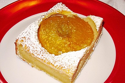 Topfen - Früchtekuchen 4