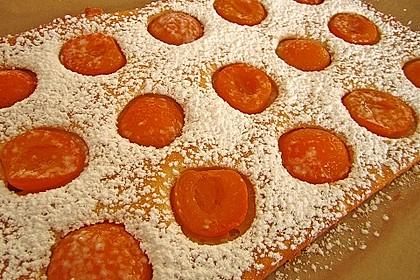 Topfen - Früchtekuchen 6