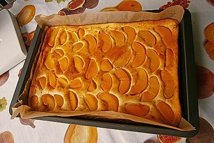 Topfen - Früchtekuchen 9