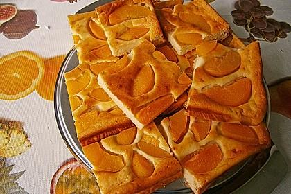 Topfen - Früchtekuchen 3