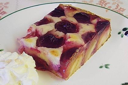 Topfen - Früchtekuchen 1