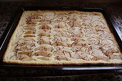 Topfen - Früchtekuchen 7