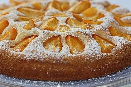 Marillenkuchen am Blech 3