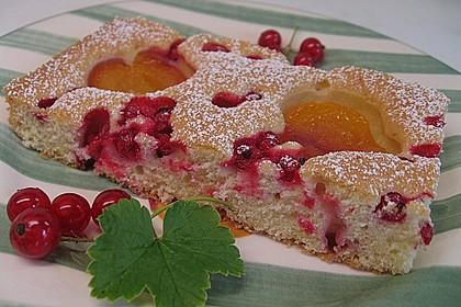 Marillenkuchen am Blech 7