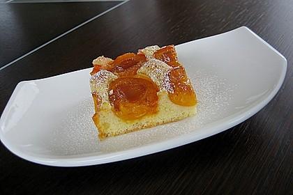 Marillenkuchen am Blech 5