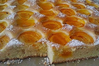 Marillenkuchen am Blech 4