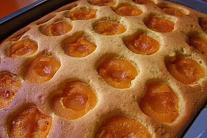 Marillenkuchen am Blech 13