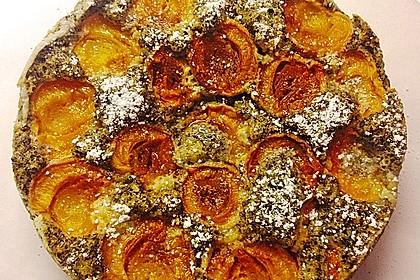 Marillenkuchen am Blech 16