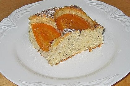 Marillenkuchen am Blech 20
