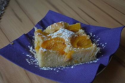 Marillenkuchen am Blech 8