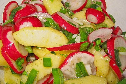 Radieschen - Salat 29