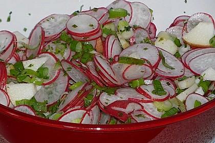 Radieschen - Salat 10