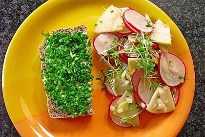 Radieschen - Salat 17