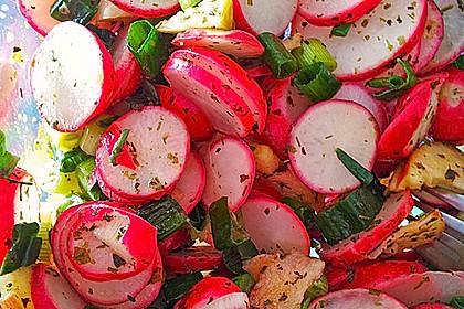 Radieschen - Salat 18