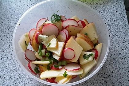 Radieschen - Salat 22