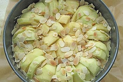 Leichter Apfelkuchen 11