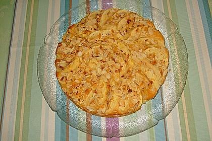 Leichter Apfelkuchen 20