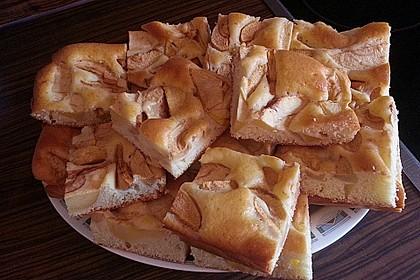 Leichter Apfelkuchen 12