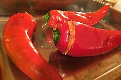 Gefüllte Paprika 2