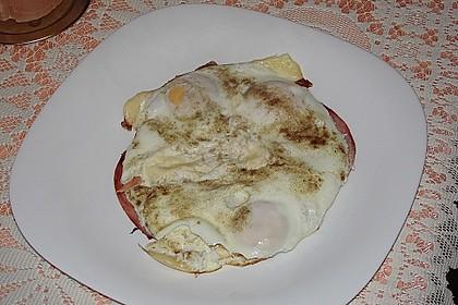 Käse-Eier 1