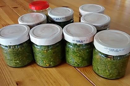 Eingesalzenes Gemüse für Gemüsebrühe 21