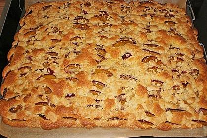 Pflaumenkuchen mit Streuseln 20