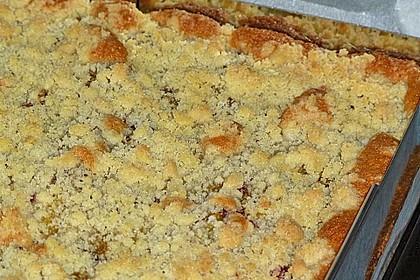 Pflaumenkuchen mit Streuseln 48