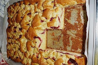 Pflaumenkuchen mit Streuseln 68