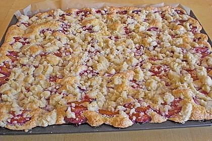 Pflaumenkuchen mit Streuseln 30