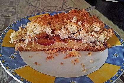 Pflaumenkuchen mit Streuseln 62