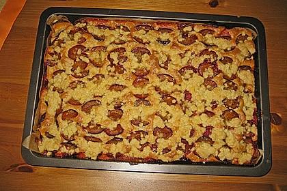 Pflaumenkuchen mit Streuseln 45