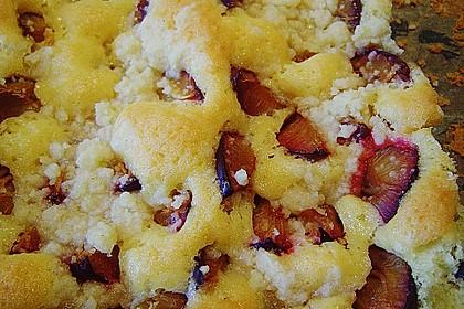 Pflaumenkuchen mit Streuseln 40