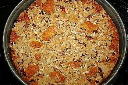 Pflaumenkuchen mit Streuseln 66