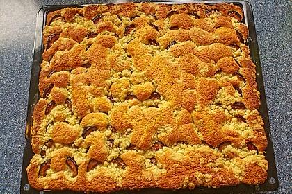 Pflaumenkuchen mit Streuseln 24