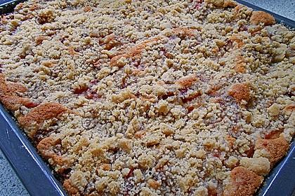 Pflaumenkuchen mit Streuseln 26
