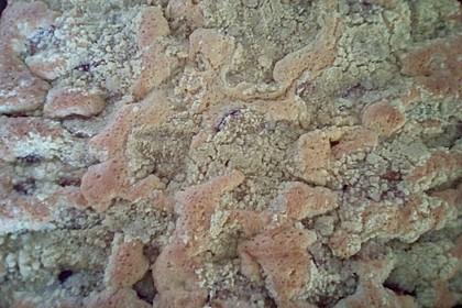 Pflaumenkuchen mit Streuseln 98