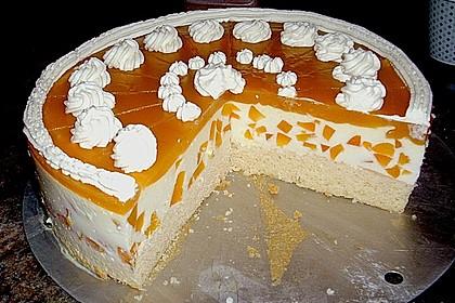 Aprikosen - Joghurt - Torte 3